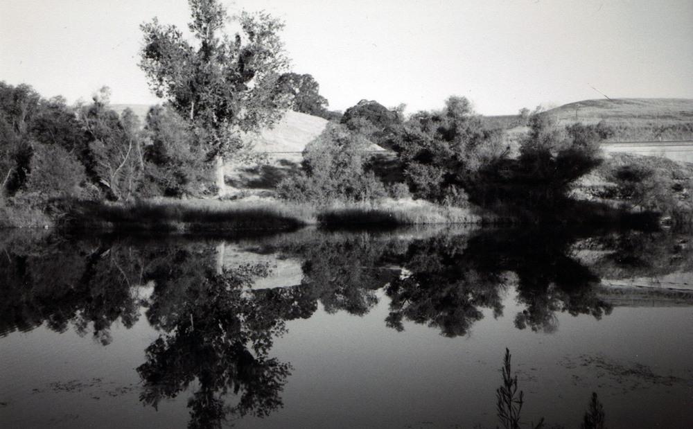 river 8.jpeg