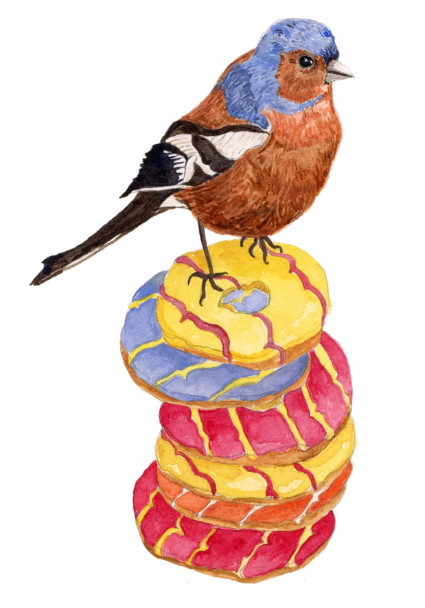 Chaffinch & Party Rings