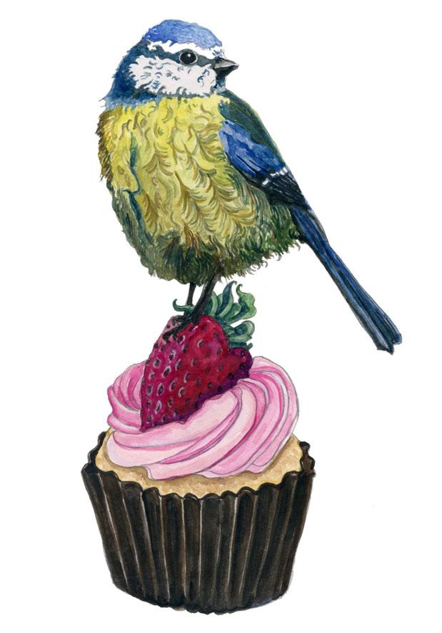 Blue Tit & Cupcake