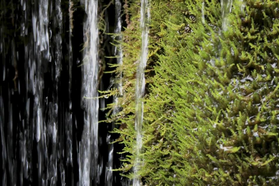 De l'eau et de la verture