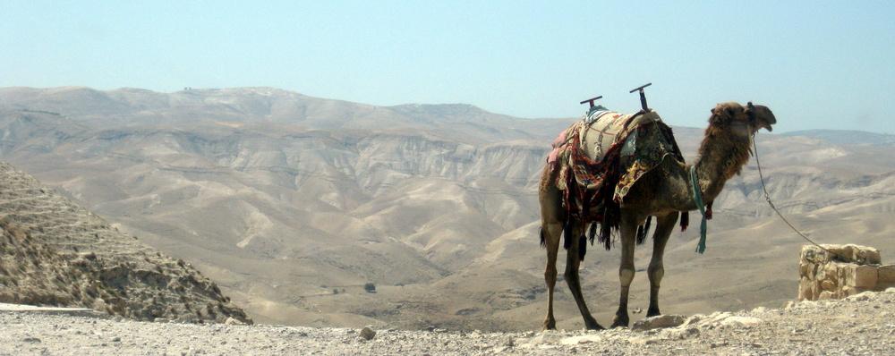 Judean Wilderness, Israel