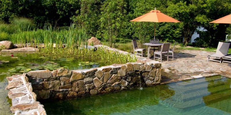 Un bassin naturel, la nature et l'eau !