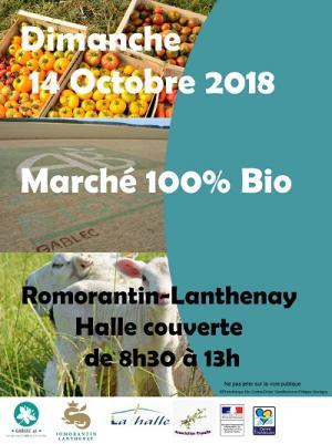 marche_romo_14oct-web.jpg