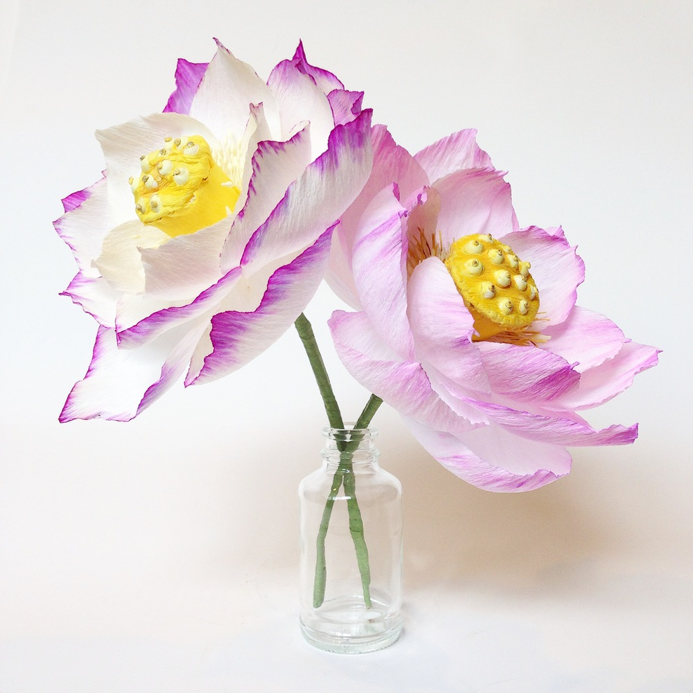 Paper Lotus Pair