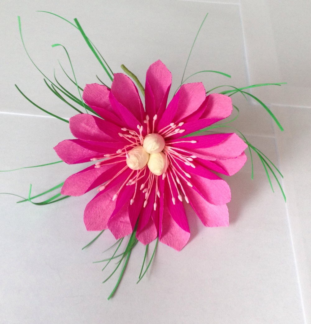 Paper Dahlia hybrid