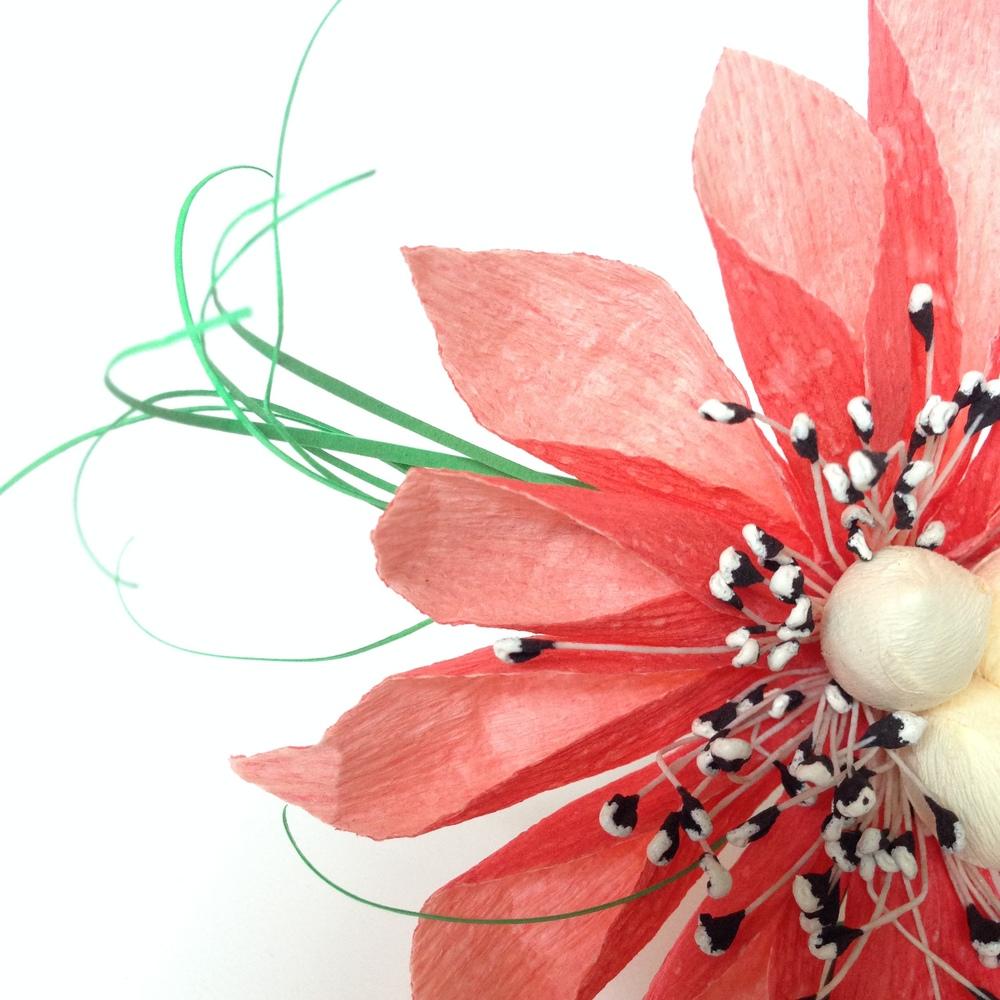 Paper Dahlia hybrid *detail