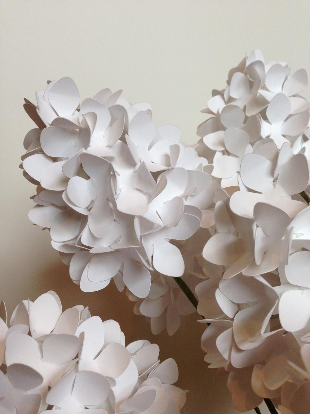 Paper Hydrangea *detail