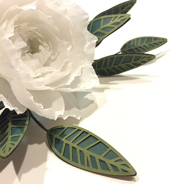 Paper Peony with foliage