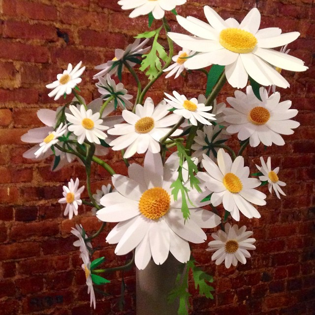 Paper daisies #intheworld for Day 28 #ctmonthinthelife