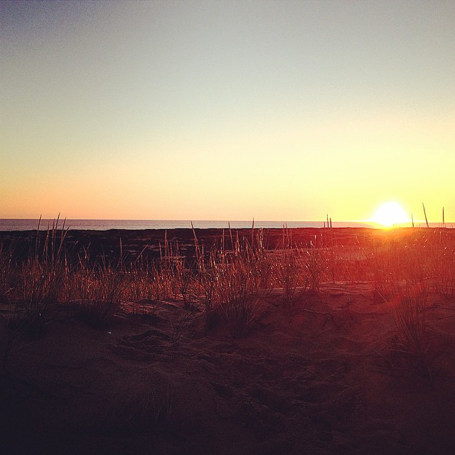 This #tbt is the sunrise from the dunes last Thursday in Provincetown. ☀️ I LOVE the #morning especially the sunrise, I wish I wasn't so nocturnal so I could enjoy it more.