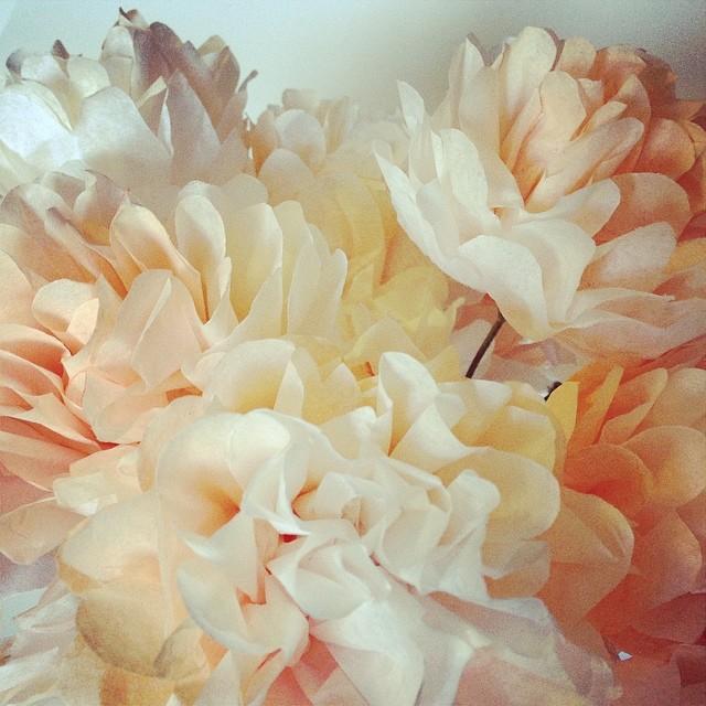 Puff peonies! #paperflowers