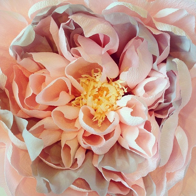 It's a giant paper peony