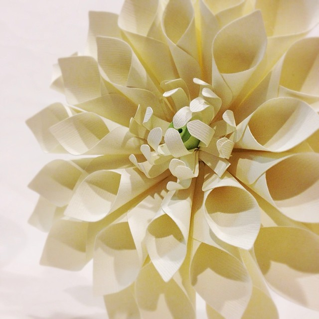 This wedding just won't be complete without this dinnerplate #dahlia #paperflower
