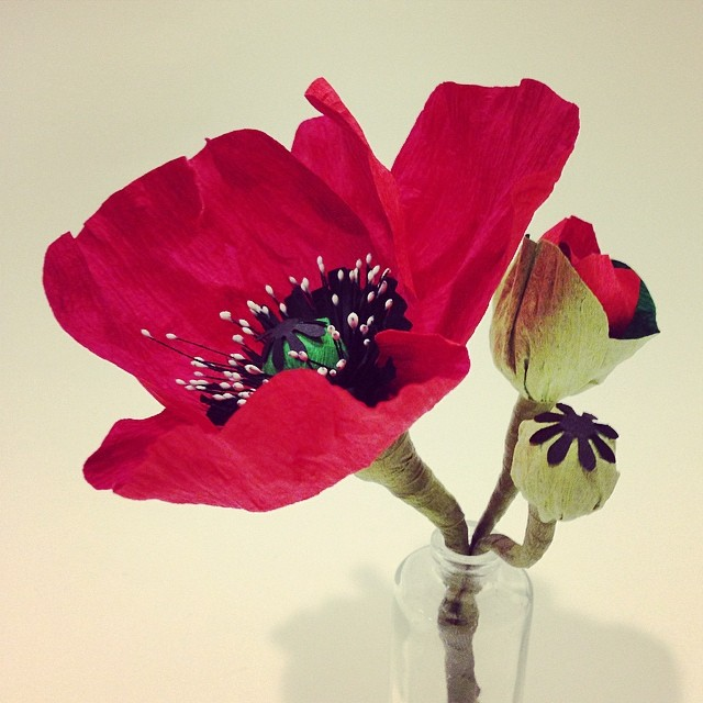 New flower in the house: these #Paperflower poppies look wonderfully realistic