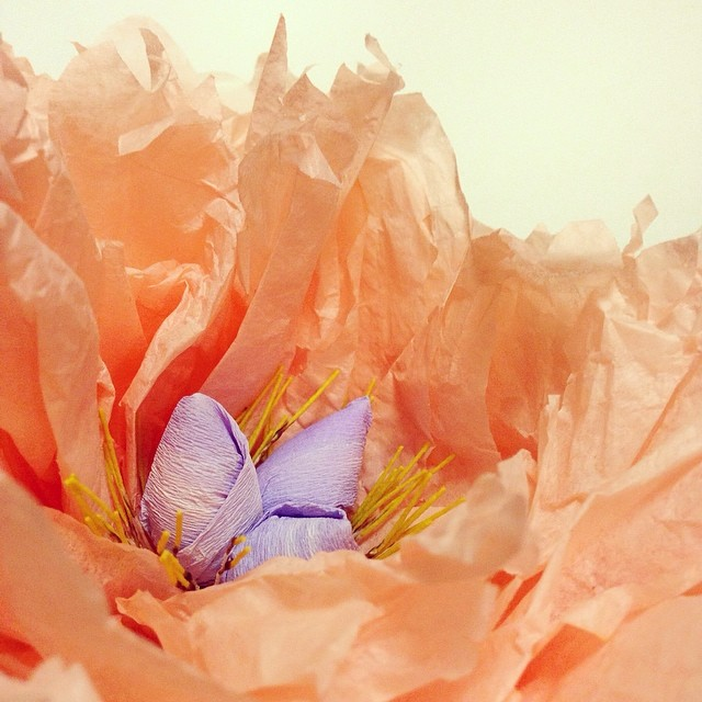 Inside a paper peony