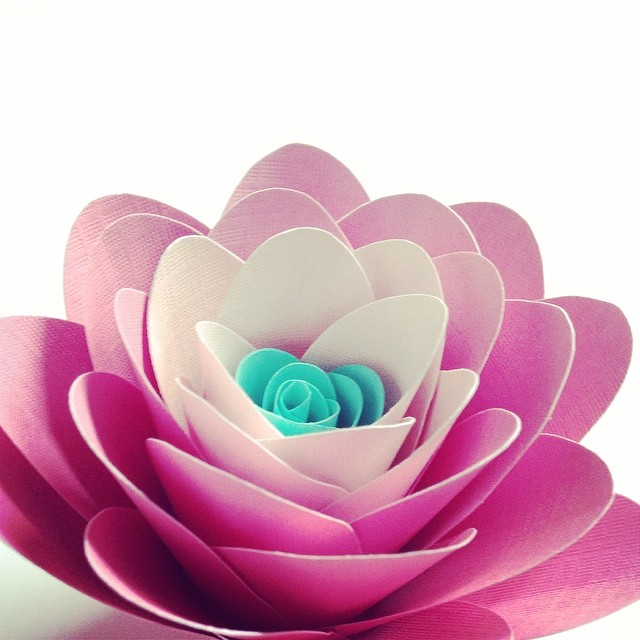 Lola #lotus #paperflower in pink