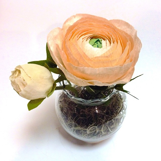My fave #ranunculus #paperflowers