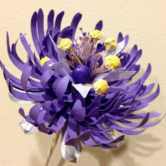 A #chrysanthemum and a #passionflower walk into a bar…
