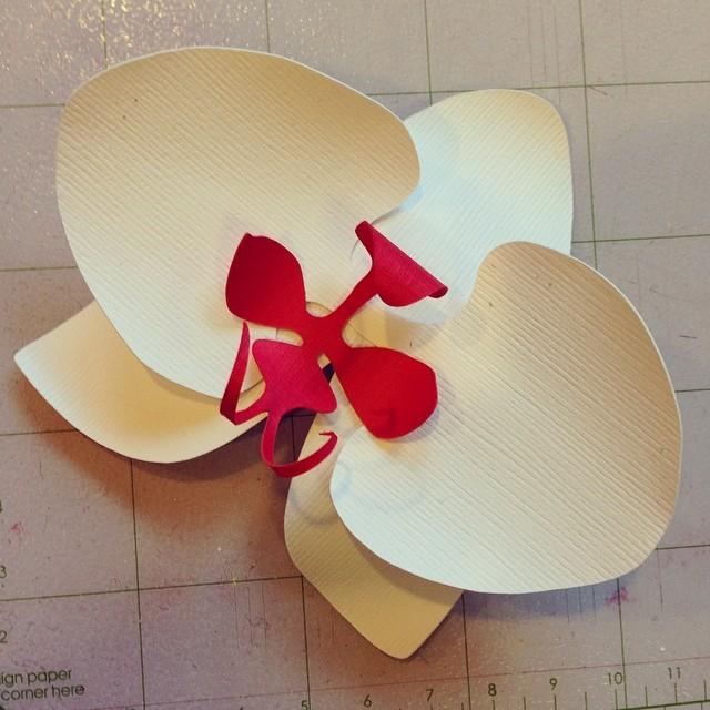 It's about time I made a #paperorchid don't ya think?