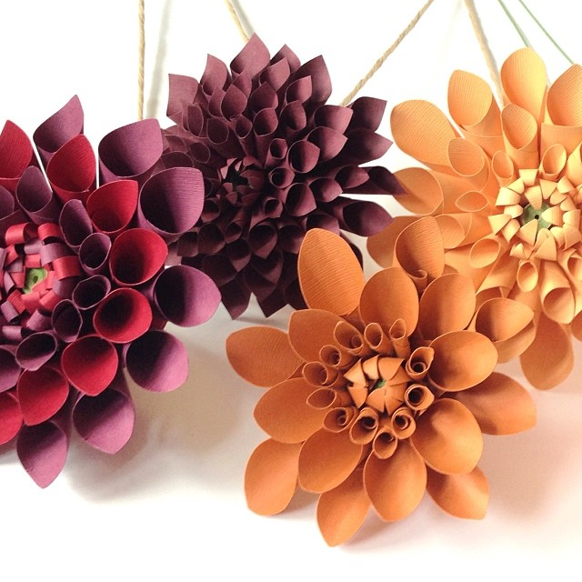 Dahlia party #paperflowers #paperdahlia #dahlias