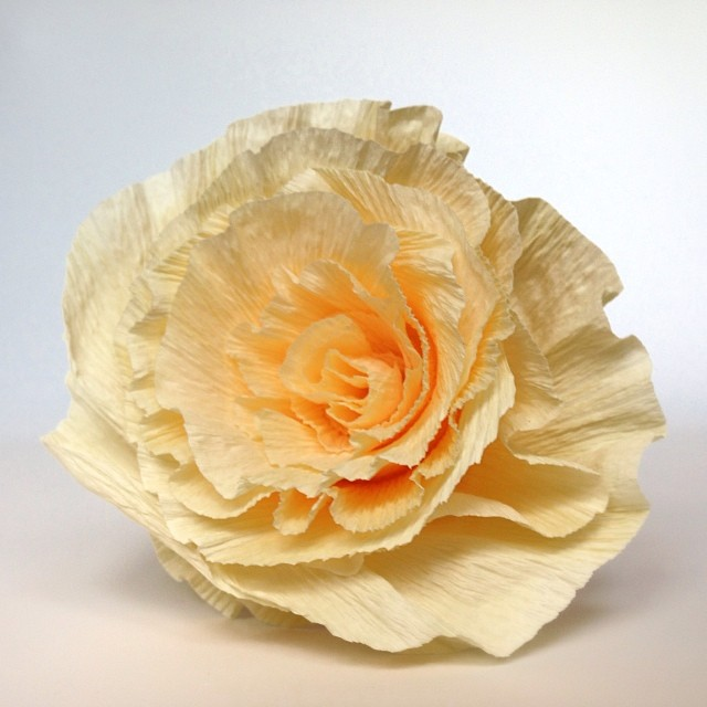 A spiral rose in Italian crepe paper :) #paperflowers