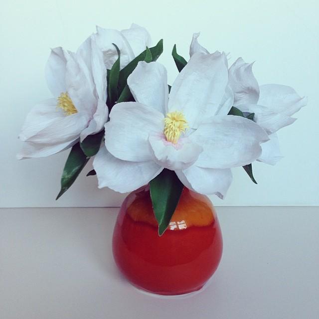 Fresh paper magnolias