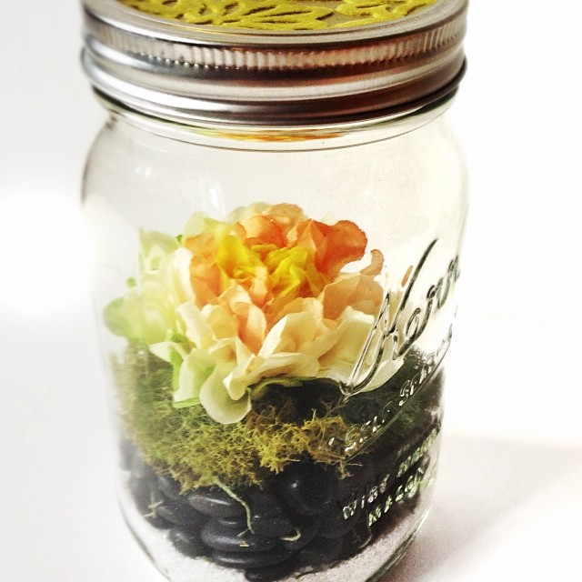 Paper flower in a #terrarium in a #masonjar ? What is this madness!