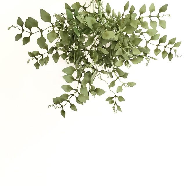 Hanging_out_with_my_jasmine_vines__paperfoliage__greenisthenewblack__paperart.jpg