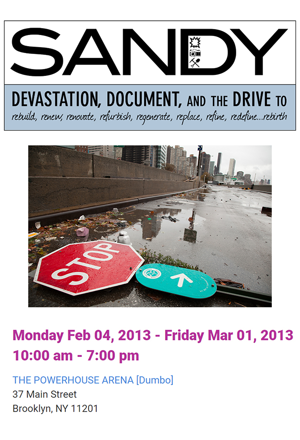 Sandy NYPF.jpg