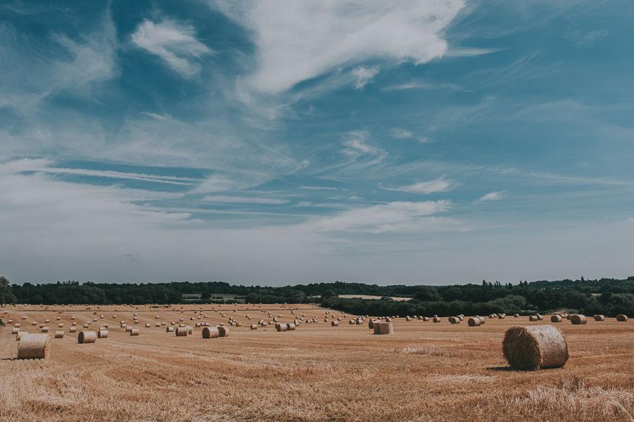 Swancar Farm Wedding - Preparation (40).jpg