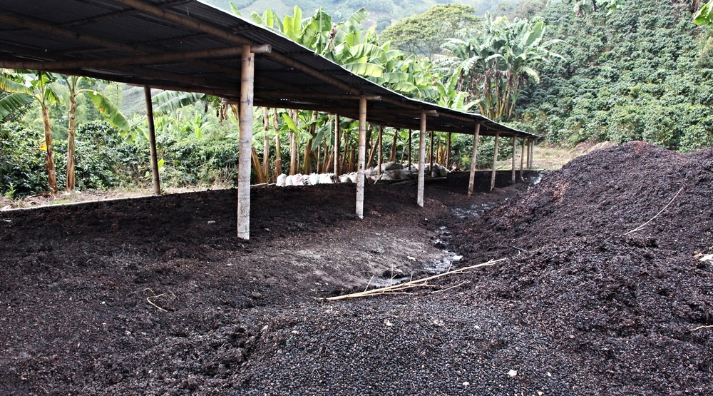 Worm composting: main ingredient coffee skin