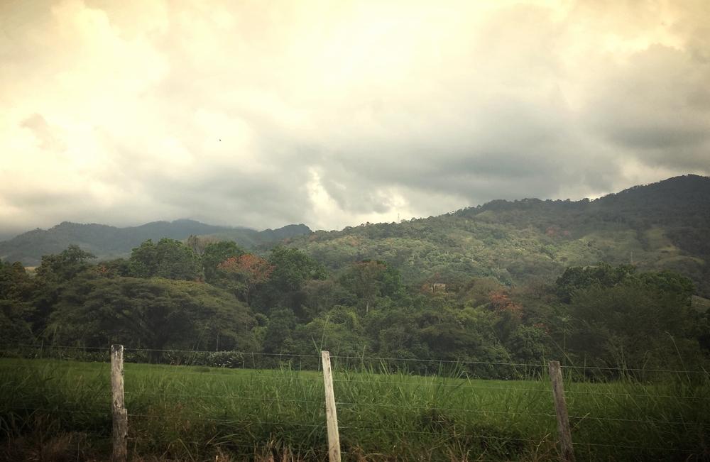 Green hills in Portuguesa state