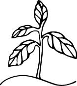 plant_logo.jpg