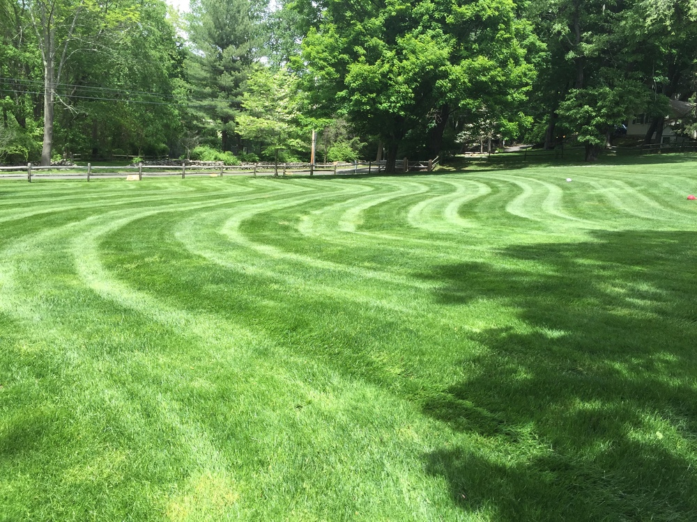 Fairfield Lawn and Landscape Services