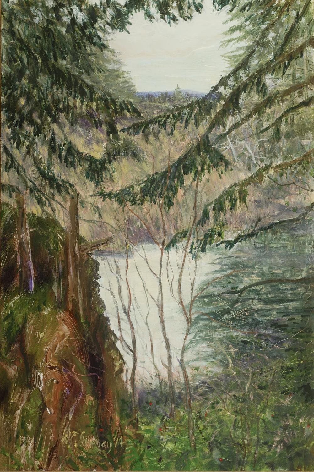 Stewart's Swamp