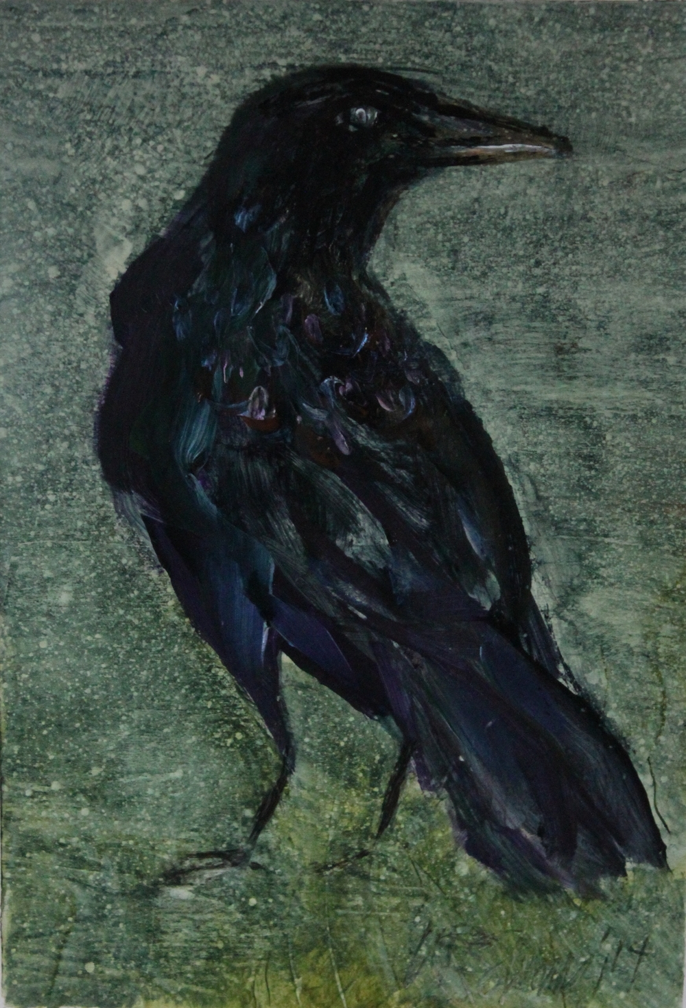 Twilight Crow