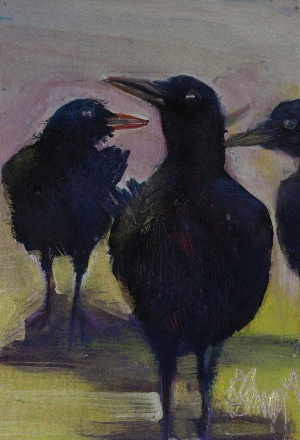Crow Fest