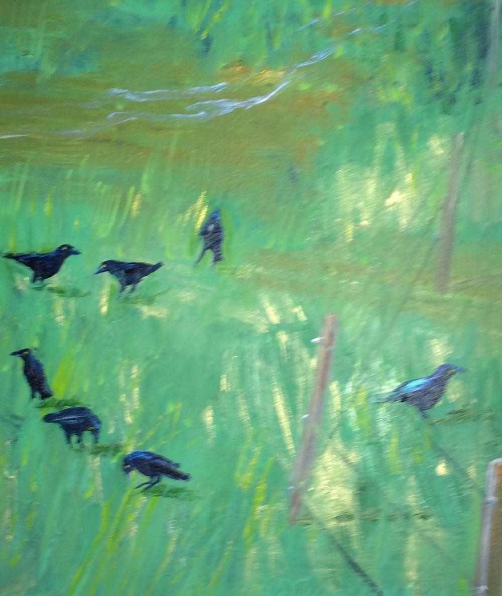 seven crows.JPG