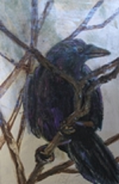 rookery crow.JPG