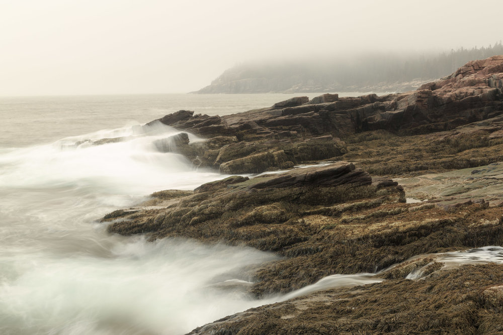 05192015_Acadia_01192.jpg