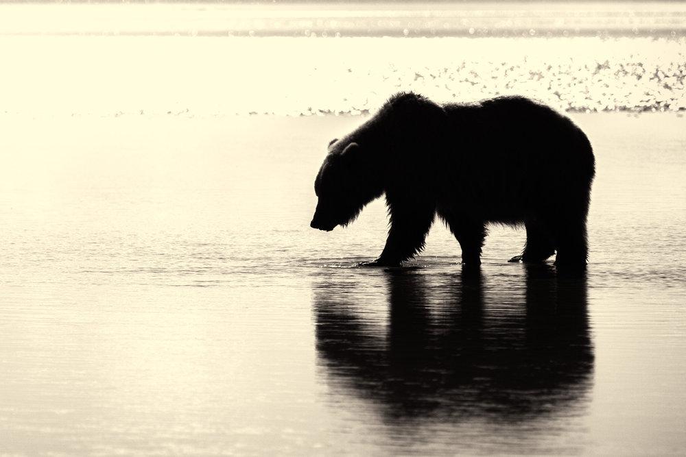 07222013_Alaska__MG_5205-687.jpg