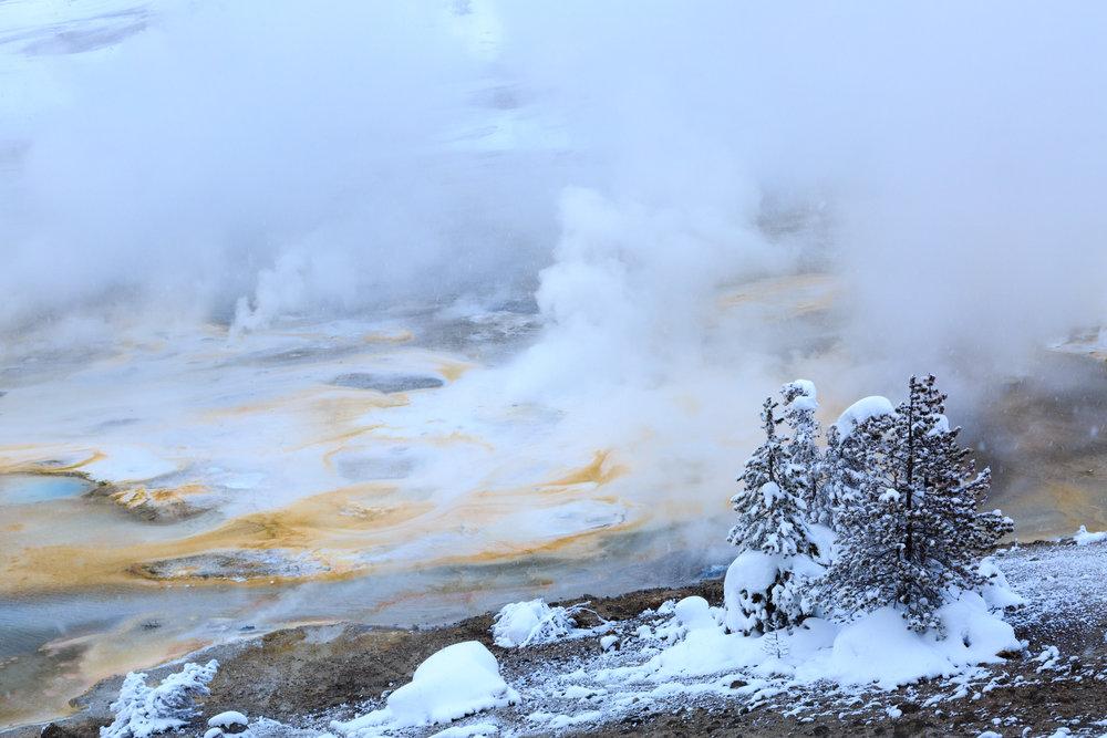 02042016_Yellowstone_09894.jpg