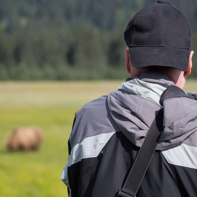 Photographing Grizzlies, Alaska