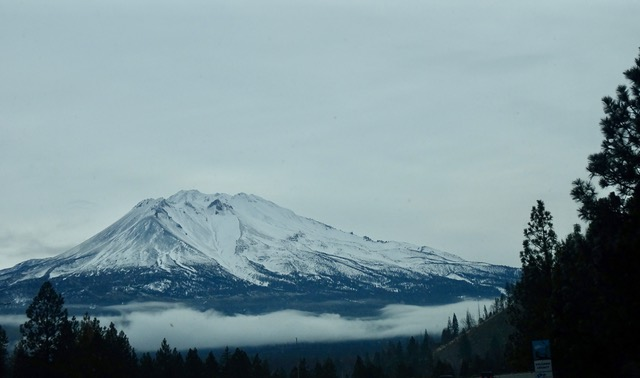 Driving by Mt.Shasta in N CA is aways inspiring!