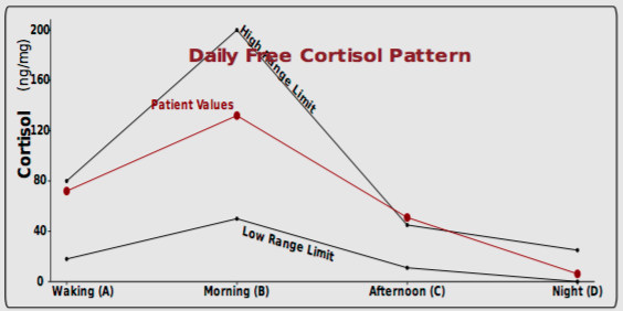 As you can see in the above example the patient's cortisol levels are above-range in the afternoon. Ideally all four measurements throughout the day would be in between the low and high range limits.