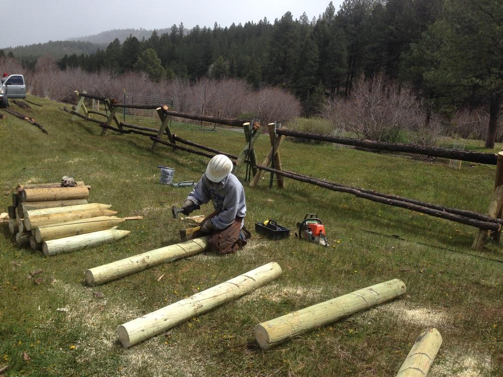 Fence Construction - Chimayo Conservation Corps - Rio de Las Vacas