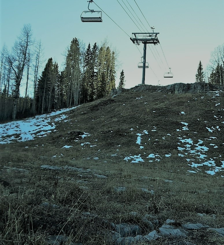 Ski Area Resource Surveys