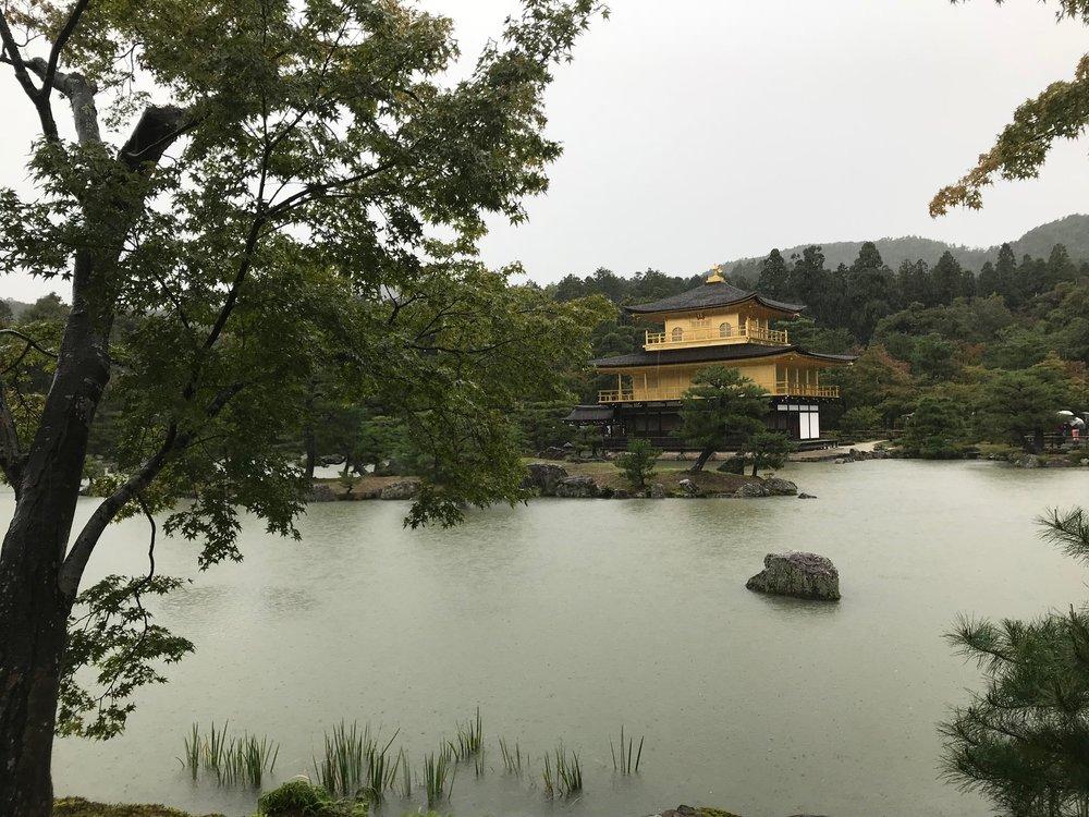 The Golden Shrine at Kinkakujicho