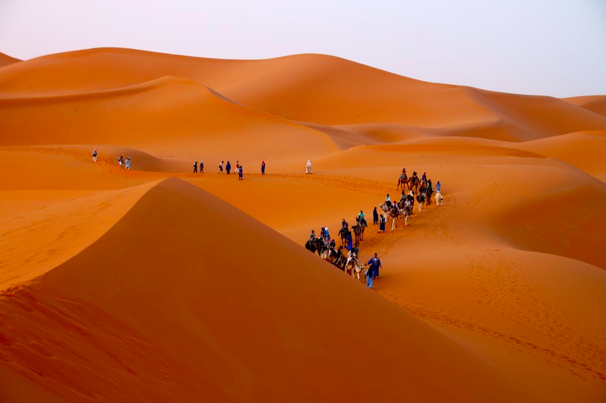 Desert // Serena Ainslie '16