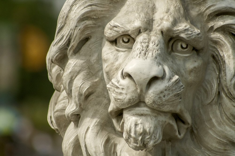 lion-statue-zoo-37609.jpeg